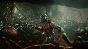 antman-ants-Featured
